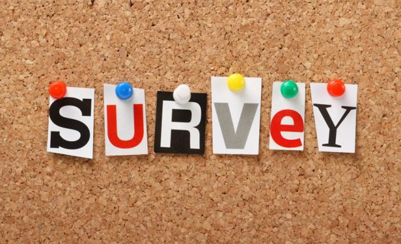 Top 11 Legitimate Survey Panels That Actually Pay in 2021