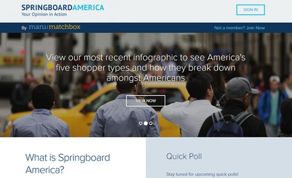 Springboard America Panel Review – Is It Worth Joining?